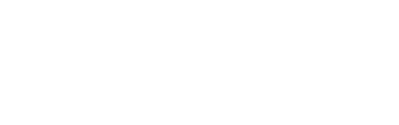 Journal of Autonomy and Security Studies - logo